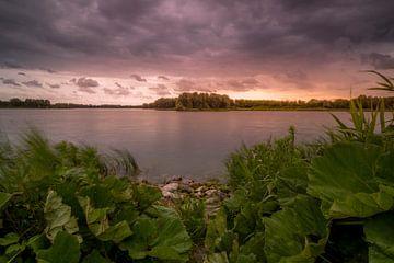 Dark Clouds van Peter Heins