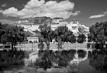 Potala paleis in Lhasa sur Jan van Reij