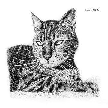 Rustende kat van Devon Leclercq