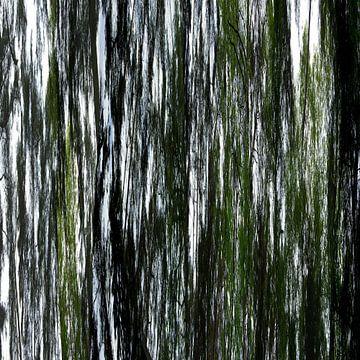 Linear forrest (04w) von Jeroen van der Meij