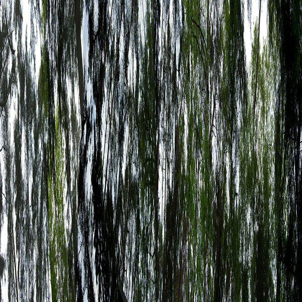 Linear forrest (04w) van Jeroen van der Meij