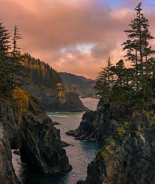 Samuel Boardman State Scenic Corridor, Oregon von Henk Meijer Photography