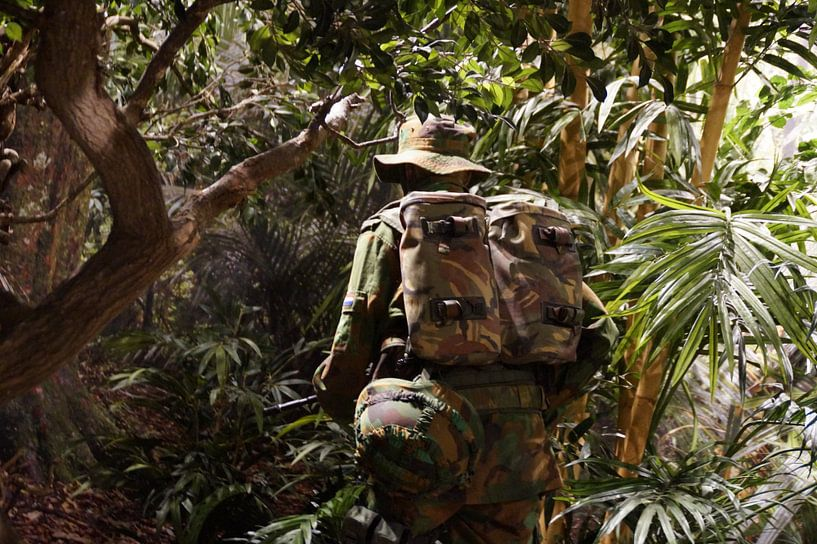 Militair in camouflage, Nationaal Militair Museum, Soest van Maurits Bredius