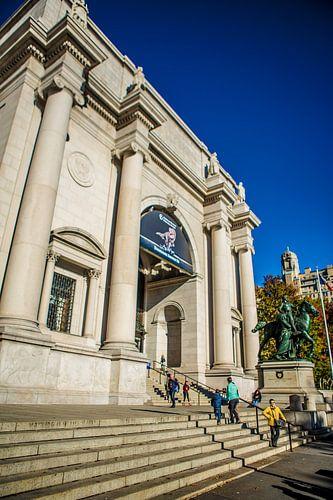 Museum of Natural History, New York van