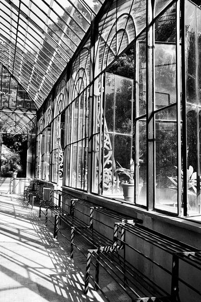 Gewächshaus im botanischen Garten von Palermo von Sven Zoeteman