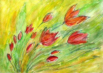 Tulpen Lente van Claudia Gründler