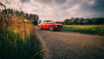 Alfa Romeo von Gianluca Lucchetti