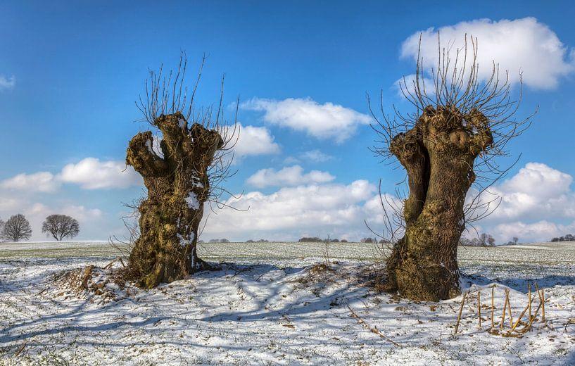 Winter in Zuid-Limburg van John Kreukniet