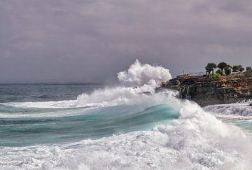 hohe Wellen von Ronenvief