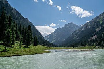 Rivier door de bergen in Kirgizië van Mickéle Godderis