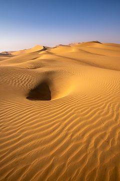 Wrijf al Khail Desert Abu Dhabi van Achim Thomae