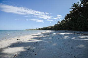 Tropisch strand in Australië van DsDuppenPhotography