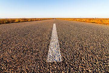 Road to Isalo van Dennis van de Water