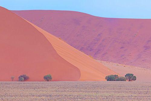 Kleurrijk Namibië van Babs Boelens
