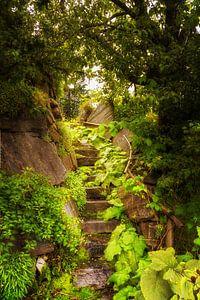 Trap in het Groen