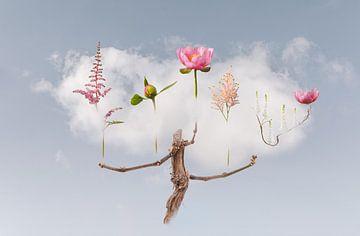 Wolke-Tragen Sie mich von Hannie Kassenaar