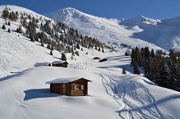 Eerste sporen in de sneeuw von Suzan (Suus) Buskes