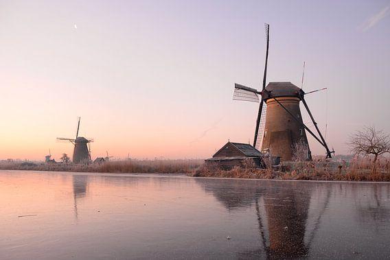 De winter wordt wakker van iPics Photography