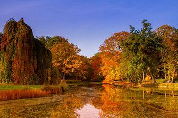Herfstkleuren van Catching Colors