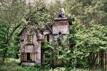 La villa sur Dick Carlier