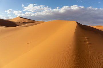 Mooie zandduinen in de woestijn van de Sahara, Marokko, Afrika van Tjeerd Kruse