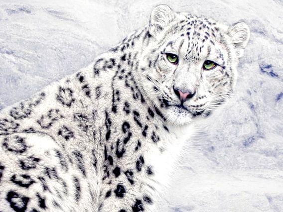 Der Schneeleopard II van Joachim G. Pinkawa