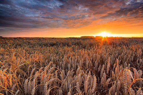 Het Hoge Land van Groningen in de zomer met een ondergaande zon