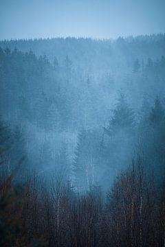 Opkomende Mist van Peter Deschepper