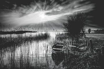Stralend zonlicht over een oud Nederlands landschap van
