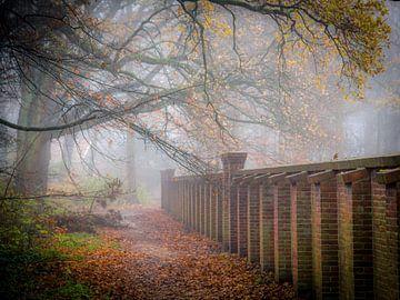 Landgoed Backershagen in de mist van Dirk van Egmond
