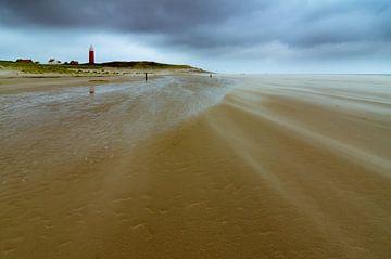 Texel 14 van