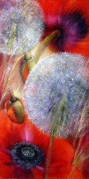 Papavers en paardenbloemen