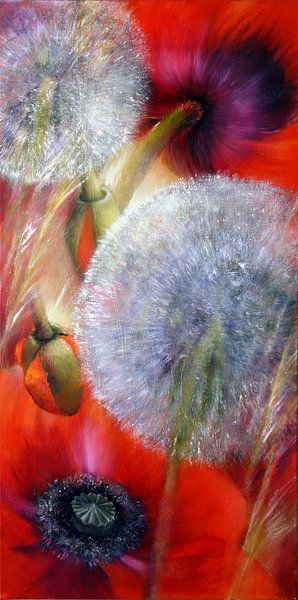 Mohn und Pusteblumen von Annette Schmucker