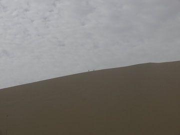 Dune von