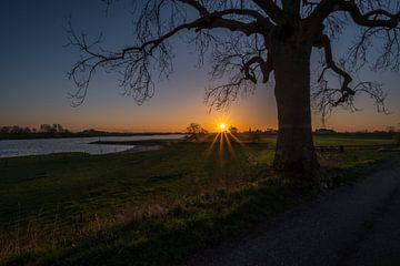 Zonsopkomst Ravenswaaij von Moetwil en van Dijk - Fotografie