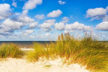 Baltische Zee puur van Daniela Beyer