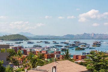 Uitzicht op de haven van Labuan Bajo op Flores in Indonesie van Michiel Ton