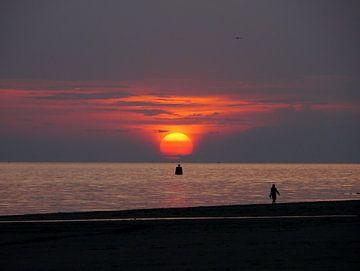 Mooie avondwandeling Zoutelande van Happy Photography