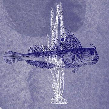 Delfter Blau-Falterfisch von Jadzia Klimkiewicz