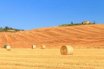 Toscaans landschap von Dennis van de Water