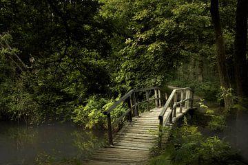 Über die Brücke von Kees van Dongen