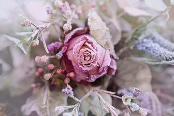 bevroren bloemen sur Marianne Bras