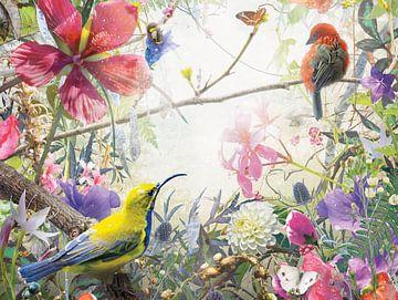 Wonder (4:3) van Jesper Krijgsman