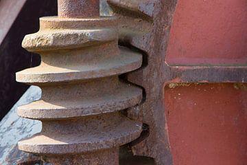 Tandwiel met wormwiel in de zon van martin von rotz