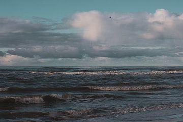 De Noordzee van Daphne Hoedjes