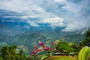 wolken boven de bergen van