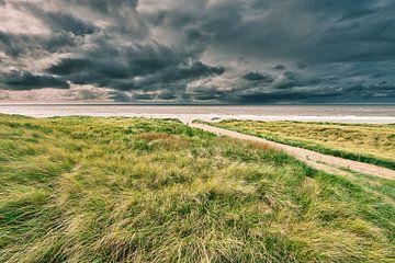 Dunkle Regenwolken über der Nordsee und der Dünenlandschaft von eric van der eijk