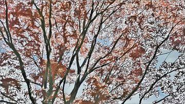 Roter Frühling und Herbstbaum - Natur - Malerei von Schildersatelier van der Ven