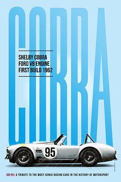 Shelby Cobra van Theodor Decker