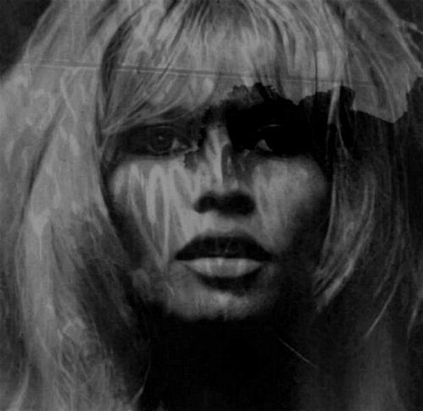 Brigitte Bardot Love - 24 Colours -. Grey Black - Game van Felix von Altersheim